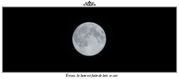 loubliette_evora